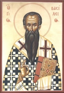 stbasil8